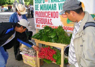 Venta de verduras producidas en comunidades indigenas