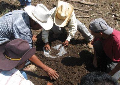 Análisis y preparación del suelo