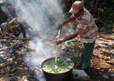 Cociendo nopal para preparar la pintura natural mezclando con cal